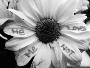 he_loves_me__he_loves_me_not__by_bigcitydreams__x3