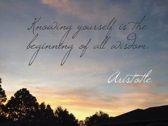 Aristotle-quote.3